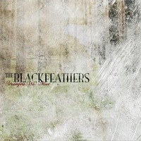 Black Feathers album art
